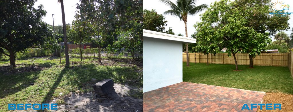 yard-before-n-after