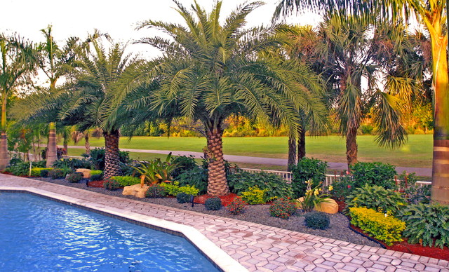 Design Of South Florida Landscaping Ideas Backyard Landscape South
